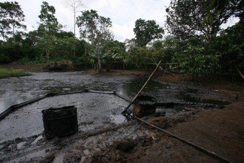 The Amazon Pink Dolphin's Voice: Former Judge Admits Corruption in Chevron Case