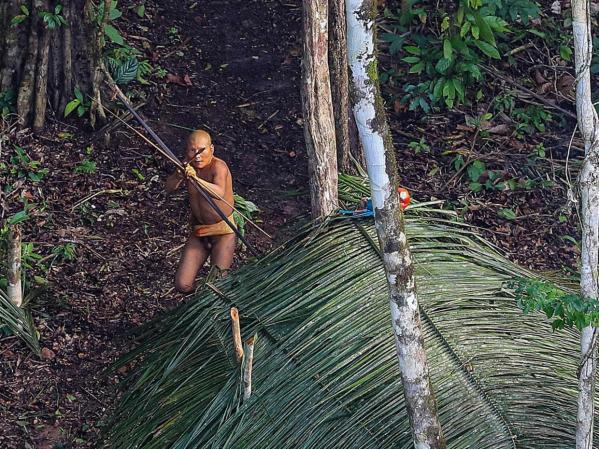 tribe-amazon-brazil